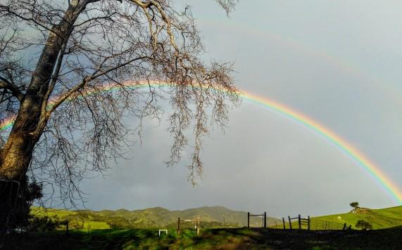 rainbow 3.8.19